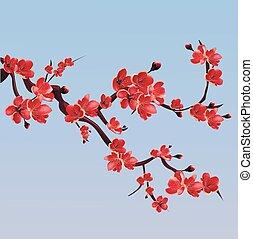 Branch of pink blossoming sakura. Japanese cherry tree.