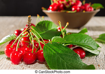 Branch of red cherry with leaves