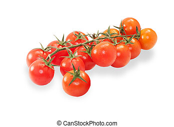 Branch of ripe cherry tomatoes isolated