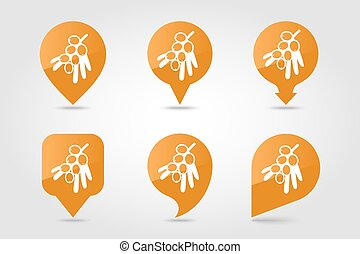 Branch of sea-buckthorn berries pin map icon