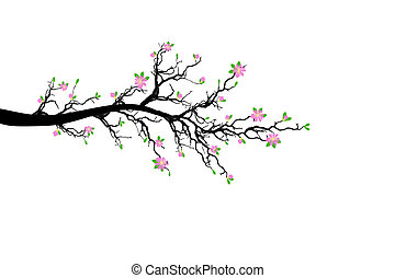 Branch of Spring Tree