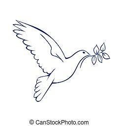 branch., peace., colombe, symbole