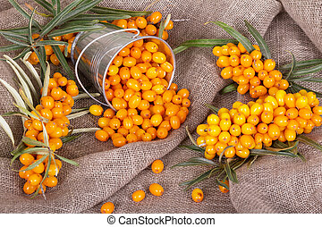 Branch sea-buckthorn and berries in bucket on the burlap