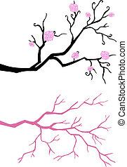 Branch tree in bloom. - Branch in bloom. isolated on white...