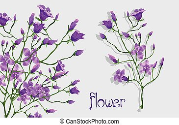 branch with flowers. vector illustration