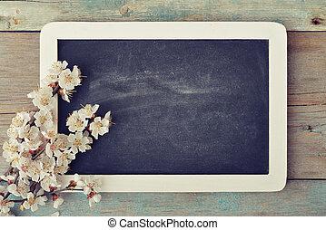 Branch with framed blackboard