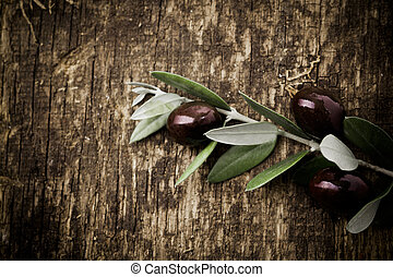 Branch with fresh black olives lying on a textured grungy wooden surface with vignetting