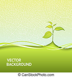 Branch with green leaves - Branch with fresh green leaves. ...