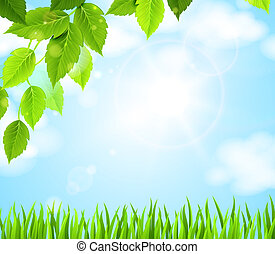 green leaves - branch with green leaves hanging from the...