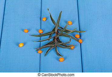 Branch with leaves and some berries of sea buckthorn closeup on background of painted wood in blue.