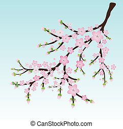Branch with pink blossoms and flower butts