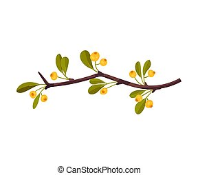 Branch with yellow berries. Vector illustration on a white background.