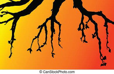 branch wood illustration