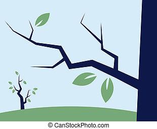 branche, à, feuilles