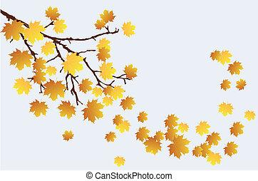 branche, automne