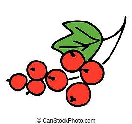 branche, groseille, baie, fond, blanc vert, rouges