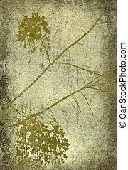 branche, grunge, impression, fleur, olive