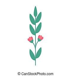 branche, icône, isolé, naturel, pousse feuilles