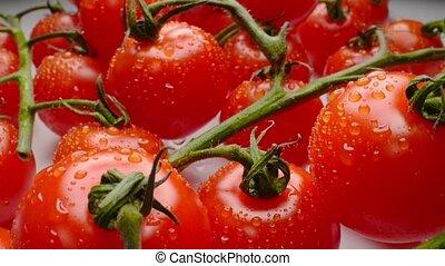 branche, juteux, beau, tomates, cerise