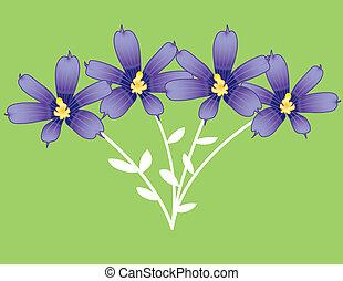 branche, violettes