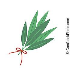 branches., bouquet, feuille laurier, attaché, plat, isolé,...