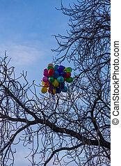 branches, coloré, collé, tchèque, prague, arbre, république, ballons