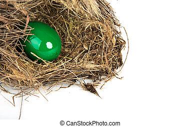branches, coloré, oeufs, fond, blanc, Paques, nid