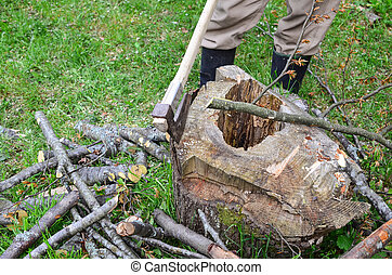 Branches cutting