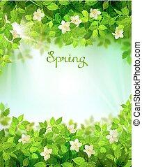 branches, elements., printemps, leaves., encadré, arrière-plan vert, saison, floral, frais