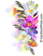 branches, freesia, doux, vecteur, fond, fleurs