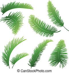 branches, i, håndflade træ