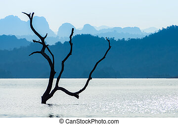 Branches in the lake with blue mountain.