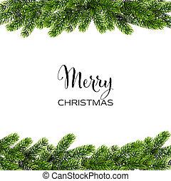 branches., kiefer, vektor, grüner hintergrund, weihnachten
