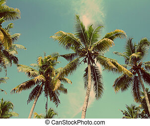 palms under blue sky - vintage retro style