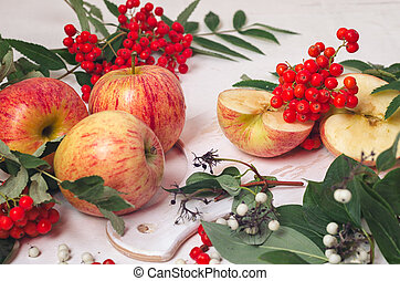 branches of mountain ash with red apples on a white wooden backgroundbranches of mountain ash with red apples on a white wooden background and green leaves