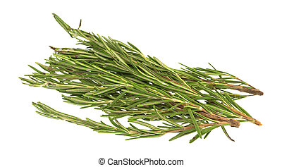 Branches of organic rosemary on a white background