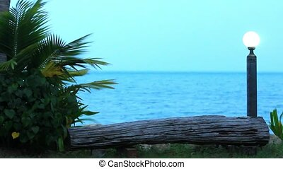 branches of palm trees sway in the breeze on cloudy day at sea and lantern. Video