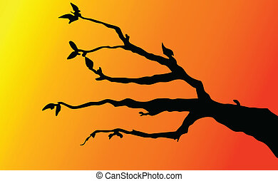 branches on twilight background