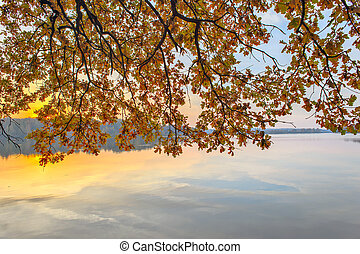Branches with autumn leaves over the river