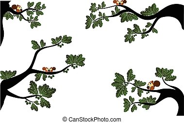 Branches with cute squirrel