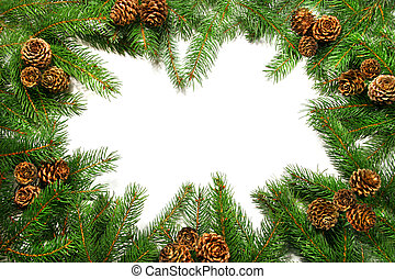 Branches with pine cones against white background