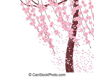 Branches with pink flowers and cherry buds, the trunk of a tree. Sakura. The petals fly in the wind. isolated on white background. illustration