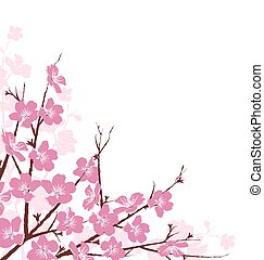 Branches with Pink Flowers Isolated on White