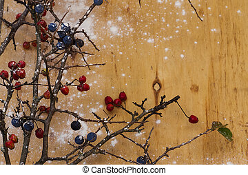 branches with red and blue berries on a blurred background