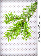 Branchlet of christmas tree in the corner on polka dot background