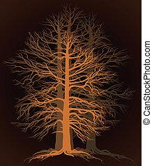 branchy, træ