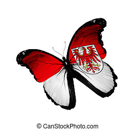 Brandenburg flag butterfly