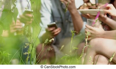 brandpunt, chatting., vaag, selectief, gras, vrienden