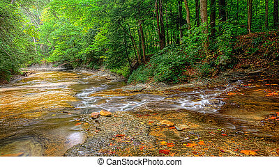 A small waterfall on Brandywine Creek in Cuyahoga Valley National Park Ohio. Seen here in summer with low water flow.
