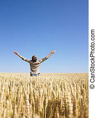 bras tendus, homme, champ, blé